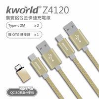 廣寰Type-C高速鋁合金充電線2M (2入包)Z4120