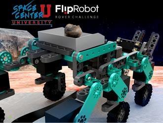 FlipRobot