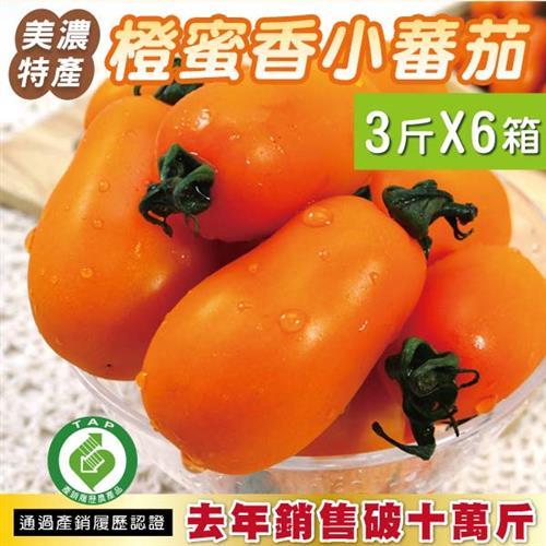 《預購》美濃特產 橙蜜香小蕃茄3斤X6盒 鮮採現配