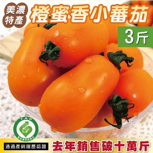 《預購》美濃特產 橙蜜香小蕃茄3斤X1盒 鮮採現配