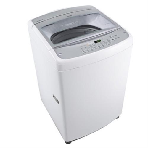 LG 樂金 14公升 拳能反轉系列 直立式洗衣機 WF-145WG