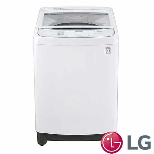 LG 樂金 16公斤 變頻直驅式洗衣機 WT-D166WG