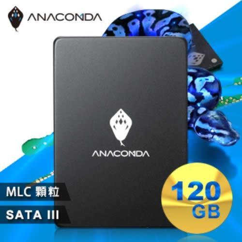 【網購獨享優惠】ANACOMDA巨蟒 侵略入門款 A1 120GB SSD