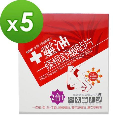 【十靈本舖】十靈油一條根舒緩貼片(二合一型) 5盒組(共10片)