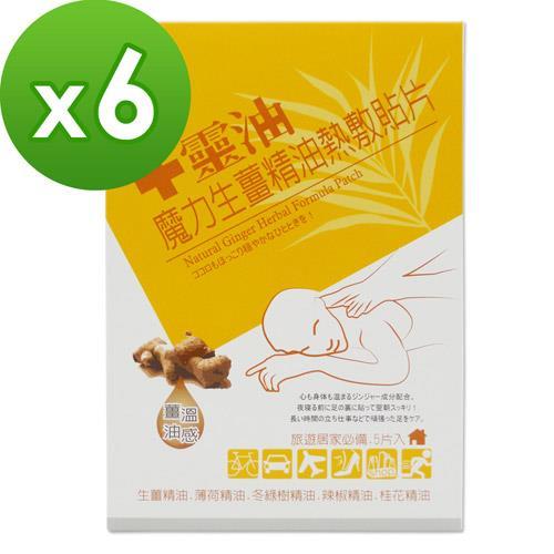 十靈油魔力生薑精油熱敷貼片6盒組(共30片)
