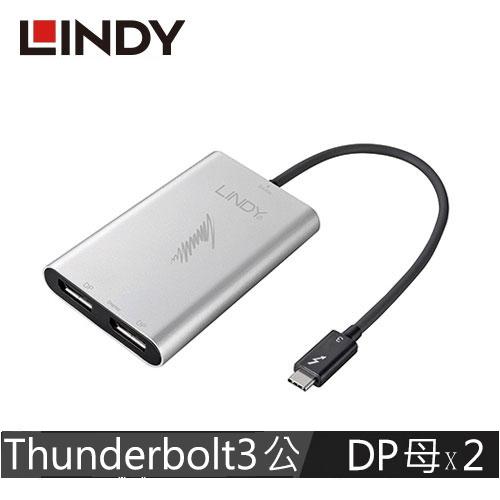 LINDY林帝 Thunderbolt 3 轉 雙DisplayPort 螢幕輸出轉接器 43901