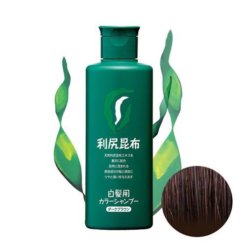 Sastty 利尻昆布白髮專用泡沫染髮露_咖啡色  日本第一 嶄新染法