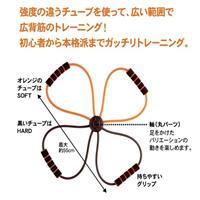 日本【alphax】強度可調健康美姿拉繩