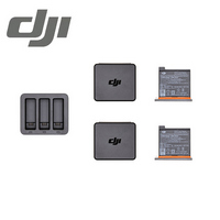 DJI Osmo Action 充電管家套裝