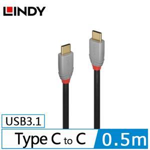 LINDY林帝 USB3.1 GEN 2 TYPE-C 公TO公 傳輸線+PD智能電流晶片 0.5M