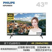 PHILIPS 43型4K聯網LED顯示器  43PUH6034